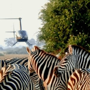 Bush Flying in Africa