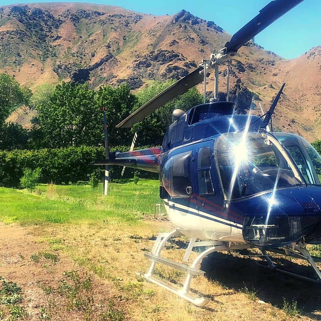 Cherry Drying Bell 206